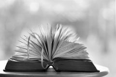 Elisa-lire-le-jour-ou-la-nuit