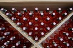 Alletru-Pascale-vins-de-lile-de-re